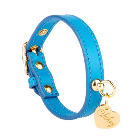 Light Blue and Gold Leather Collar