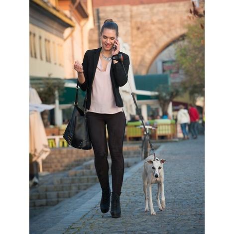 Lishinu Hand-free Retractable Dog Lead - Blue 3