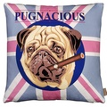 Pugnacious Cushion