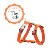 Red Dingo - Plain Dog Harness - Orange