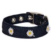Creature Clothes - Denim With Daisies Dog Collar