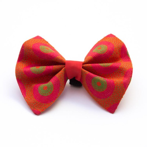 Kiwi Shweshwe Dog Bow Tie