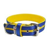 El Perro - Candy Strip Collar - Yellow & Royal Blue