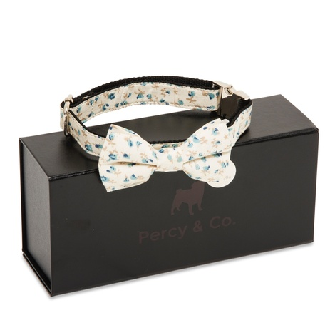 The Stamford Bow Tie Collar