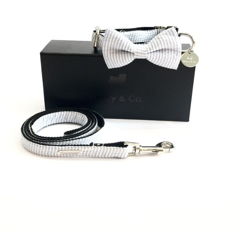 Collar, Bow Tie and Lead Set - Putney
