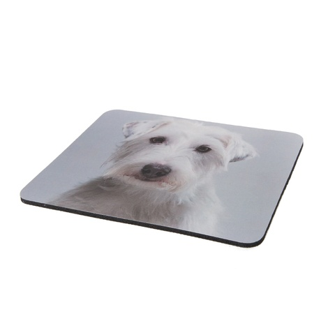 Personalised Pet Mouse Mat 2