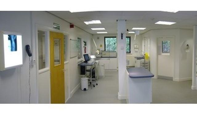 Cardiff Cat Clinic