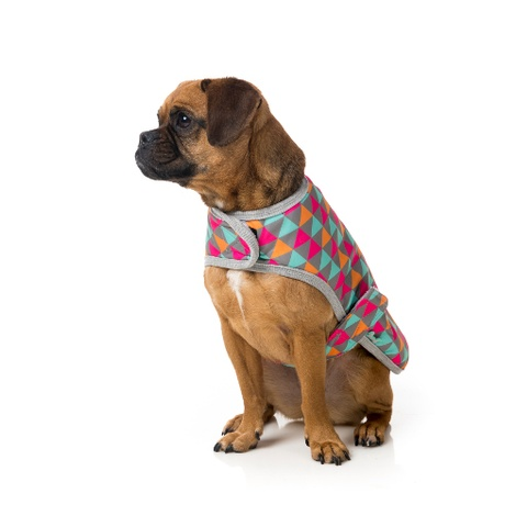 Pop Wrap Dog Coat 2