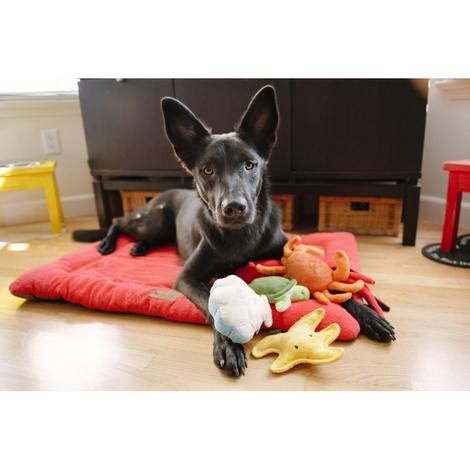King Crab Plush Squeaky Dog Toy 4