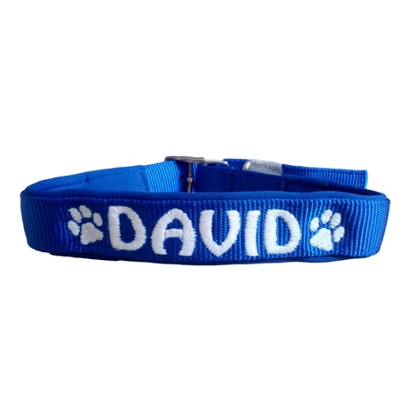 Personalised Embroidered Dog Collar – Blue