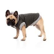 FuzzYard - Jersey Dog Hoodie