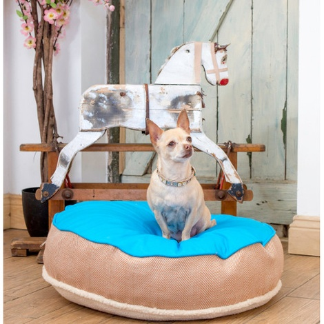 Cosy Top Soft Dog Bed - Blue 4
