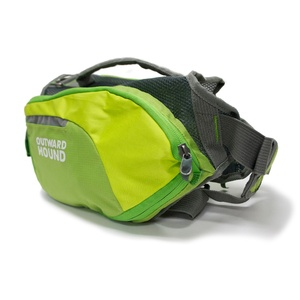 DayPak Backpack for Dogs - Green