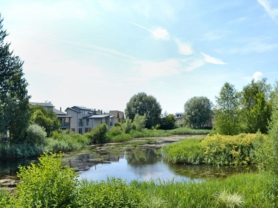 Dragonfly Island, Gloucestershire, Cirencester
