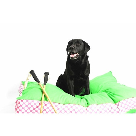 Two Tone Dog Bed - Green & Daisy Stripe 2