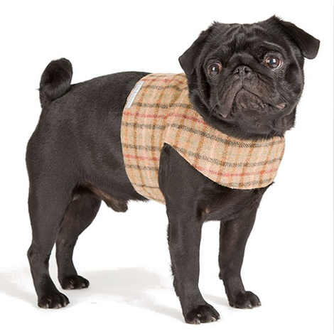 Balmoral Tweed Dog Harness