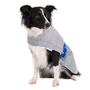 Minkeys Tweed - Darcy Tweed Dog Coat