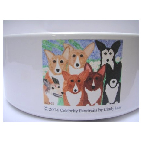 Corgi Dog Bowl 4