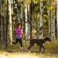 Slackline Dog Lead – Purple Dusk 5