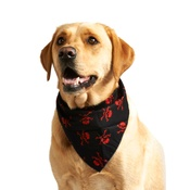 Pet Pooch Boutique - Red Skulls Dog Bandana