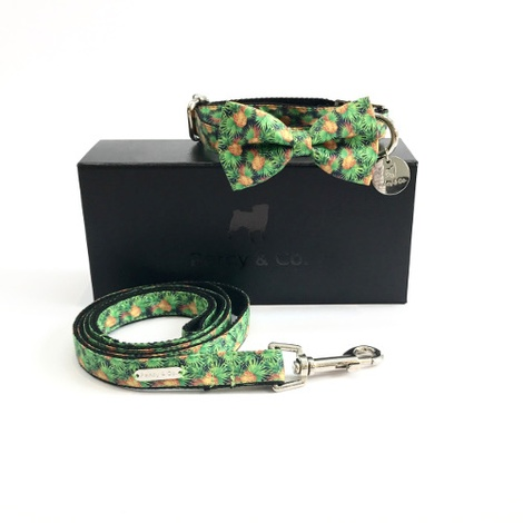 Collar, Bow Tie and Lead Set - Alderley
