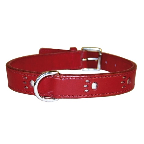 Bobby Paws Dog Collar - Red