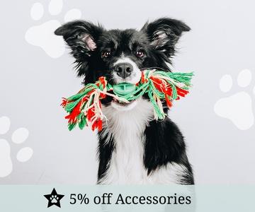 PetsPyjamas Accessories