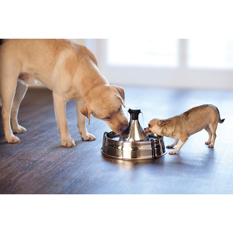 PetSafe® Drinkwell® 360 Stainless Steel Pet Fountain 2
