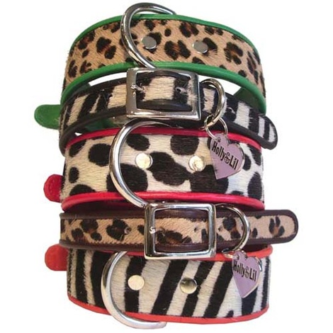 Black Zebra Safari Collar 2