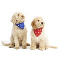 Blue Star Dog Bandana  3