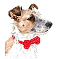Personalised Pet Portrait 6