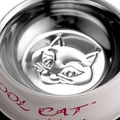 Cool Cat Sip & Snack Water & Food Cat Bowl in Pink