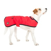 Country and Twee - Red Waxed Cotton Dog Coat