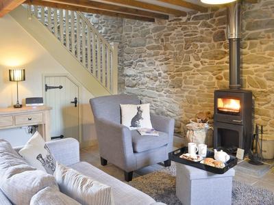 Ivy Bush Cottage, Ceredigion, Llanddewi-Brefi