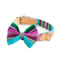 Inca Blue Dog Bow Tie 3