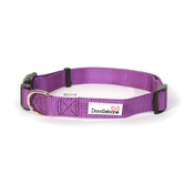 Doodlebone - Bold Dog Collar – Purple