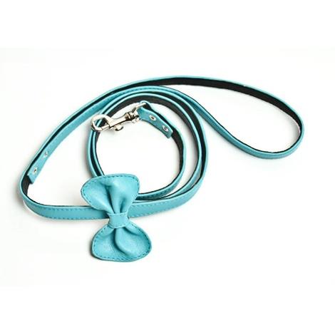 Blue Dog Leash 2