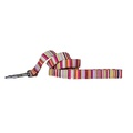Candy Stripe Dog Lead