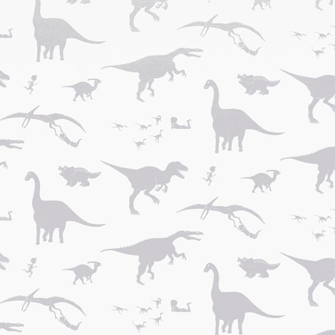 Dinosaur Wallpaper 3
