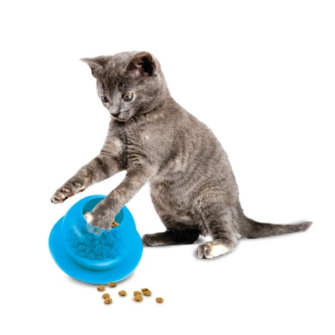 Fishbowl Cat Feeder Toy