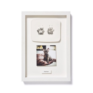 Framed Personalised Paw Mould & Photo