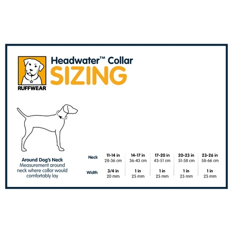 Headwater Dog Collar – Blue Spring 3