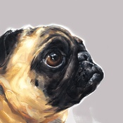 Paint My Dog  - Pug Small Art Print