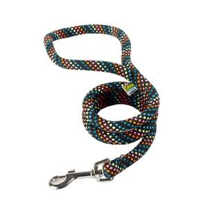 Braided Dog Lead – Rainbow with Black