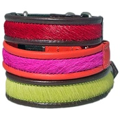 Holly&Lil - BrightSide Cat Collars