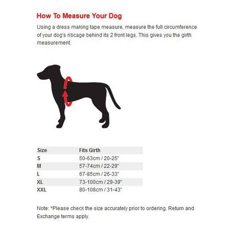 Cool Dog K9 Trek Harness in Black 3