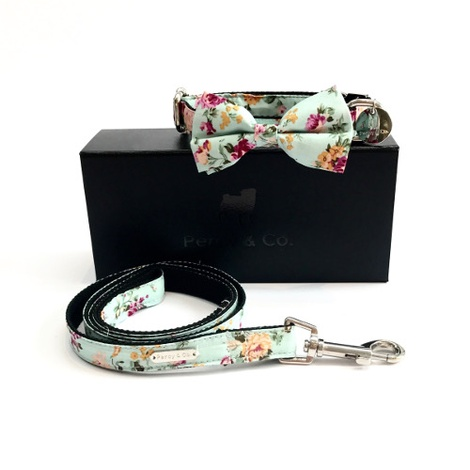 Collar, Bow Tie and Lead Set - Barnes