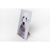 PetsPyjamas - Personalised Plastic Photo of Your Pet