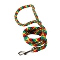 Braided Dog Lead – Green, Red & Yellow
