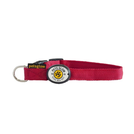 Outshined LED Dog Collar Red 2